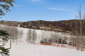 Aspen real estate 121116 141989 425 Wood Road Unit 13 7 190H