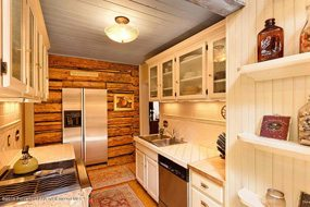 Aspen real estate 050717 141518 735 W Bleeker Street 3 190H