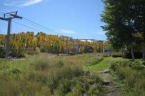 Aspen real estate 052117 140780 65 Campground Lane 71 6 190H