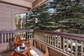 Aspen real estate 061117 143702 610 S West End Street C 205 6 190H