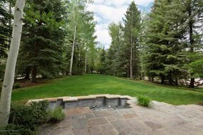 Aspen real estate 072317 149366 805 Roaring Fork Road 6 190H