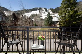 Aspen real estate 091017 148440 700 S Monarch Street 202 6 190H