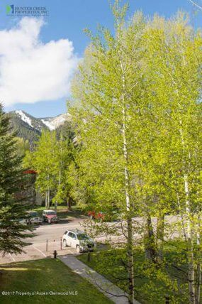 Aspen real estate 091017 148471 1233 Vine Street 1233 6 190H