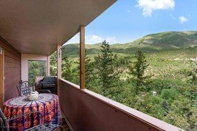 Aspen real estate 091017 149524 230 Pitkin Mesa Drive 6 190H