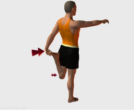 Estiramiento (stretching, streching) recomendado para:  ciclismo,  atletismo,  senderismo,  snowboard,  squash,  pesas,  tenis,  esquí,  triatlón,  correr,  kitesurf,  padel,  esgrima,  hockey,  piernas,  rápidos,  vuelo,  cuádriceps.