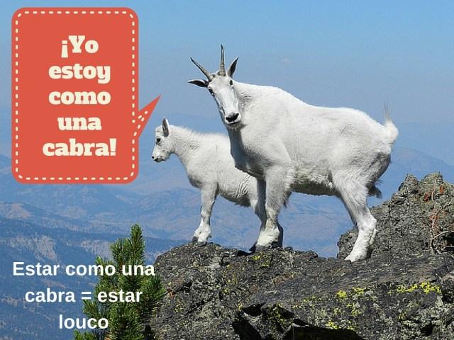 espanhol expressao cabra