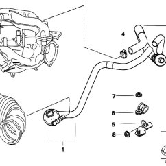 Bmw E36 Vacuum Hose Diagram Labeled Of Abdominal Vasculature Original Parts For 316i 1 9 M43 Compact Engine Control And Mini Car