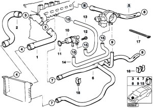 Original Parts for E36 320i M50 Sedan  Engine Cooling System Water Hoses  eStoreCentral