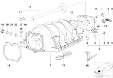 Original Parts for E39 540i M62 Touring / Engine/ Lubricat
