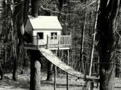 árvore-conjunção-casa