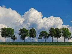 árvore-conjunção-nuvens-lenormand