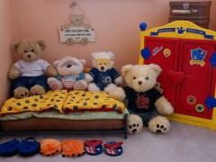 urso-conjunto-casa-lenormand