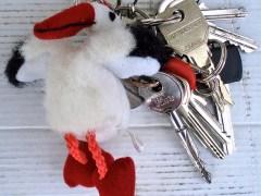 chave-conjunção-cegonha-lenormand