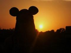 rato-conjunção-sol-lenormand