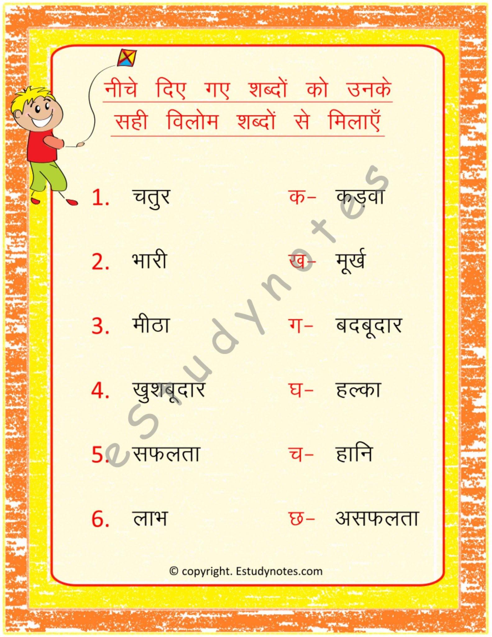 Opposites And Plurals Grade 2 Hindi Grammar