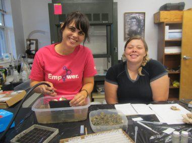 mi verano como voluntaria en la Smithsonian