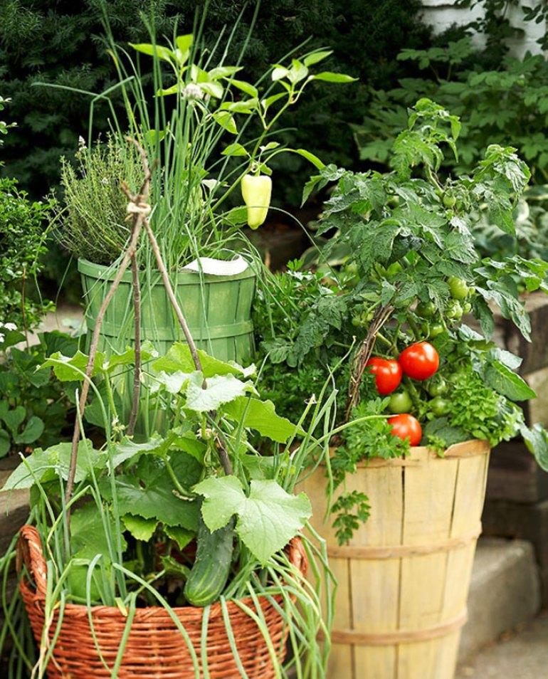 5 DIY para tu terraza. Plantar un maceto huerto con tomates