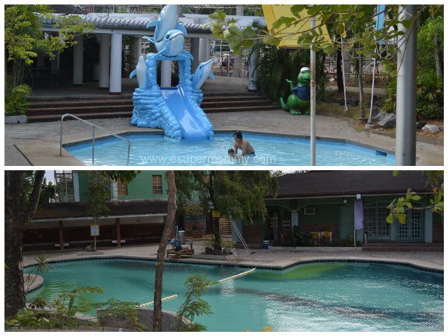 Sitio Lucia Pool Dolphin