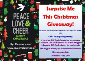 Surprise Me This Christmas Giveaway!