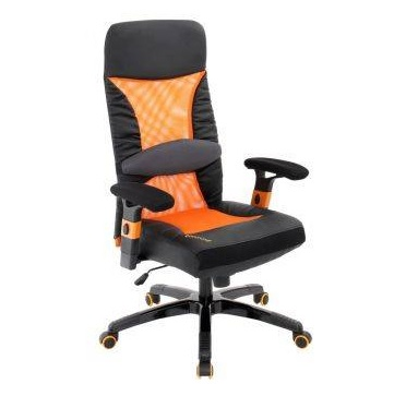 Desk-Chair with Lumbar Support