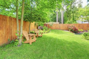 Discover the best ways to maintain your wood fence!