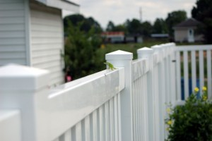 5 Environmental Factors That Prove that Vinyl Fences are the Best Weatherproof Fence