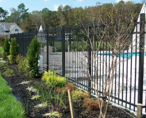 The Top Reasons for Some Pool Fencing this Summer