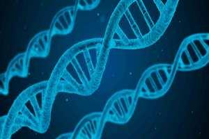 imagen de terapia genética