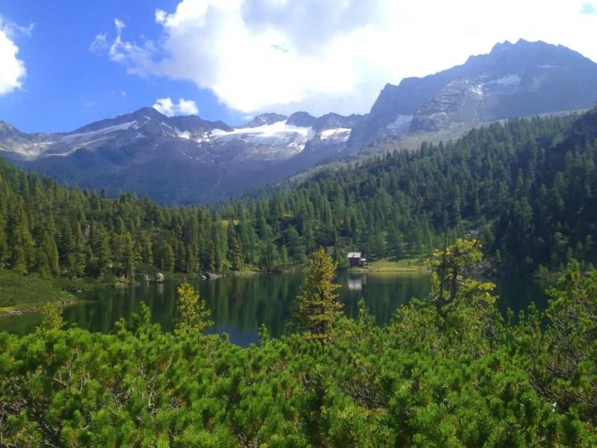 Reedsee in den Alpen