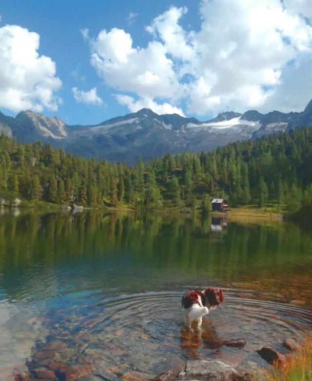 Alpen wandern zum Reedsee