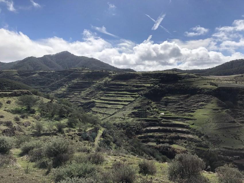Terrassenplantagen in der Nähe von Juncalillo
