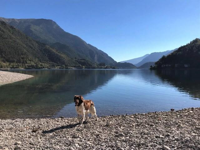 Wandern mit Hund am Lago di Ledro