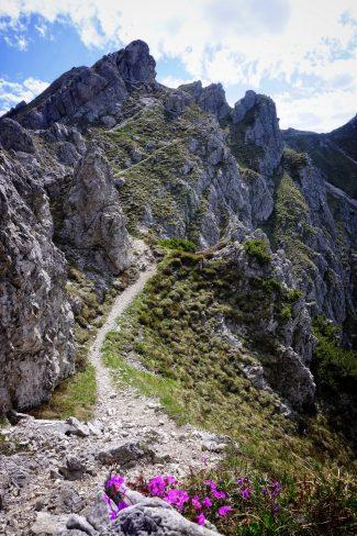 Berg Gardasee