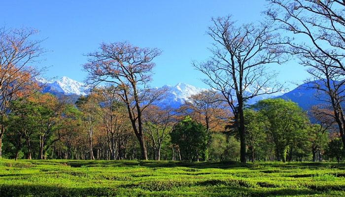 Best Time To Visit Himachal Pradesh