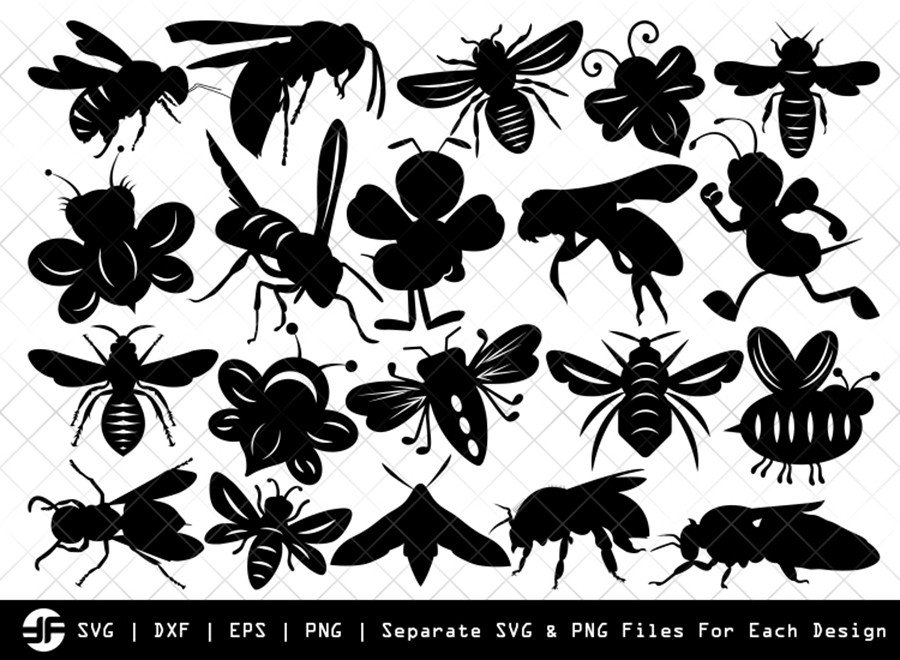 Bee SVG | Insect SVG | Silhouette Bundle | SVG Cut File