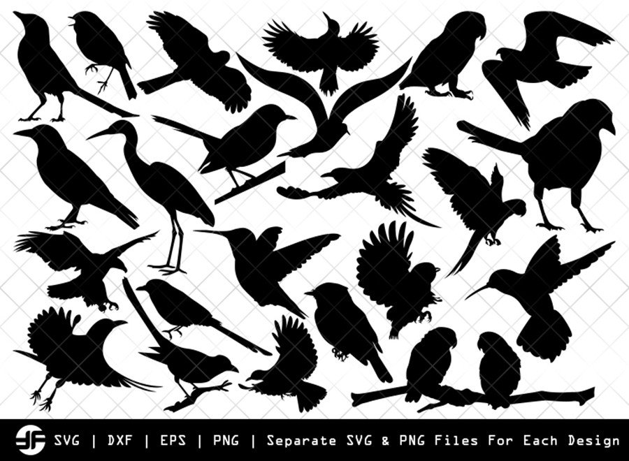 Birds SVG | Bird Silhouette | Bird Bundle | SVG Cut File