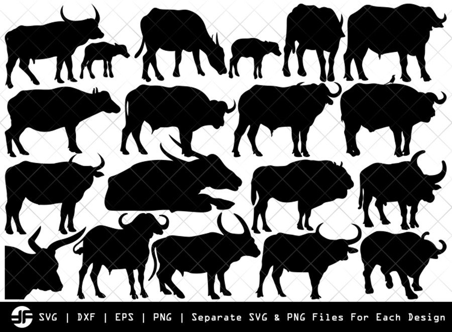 Buffalo SVG | Animal SVG | Silhouette Bundle | SVG Cut File