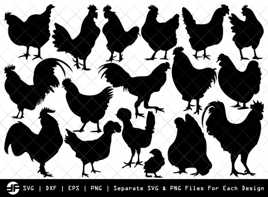 Chicken SVG | Animal SVG | Silhouette Bundle | Cut File