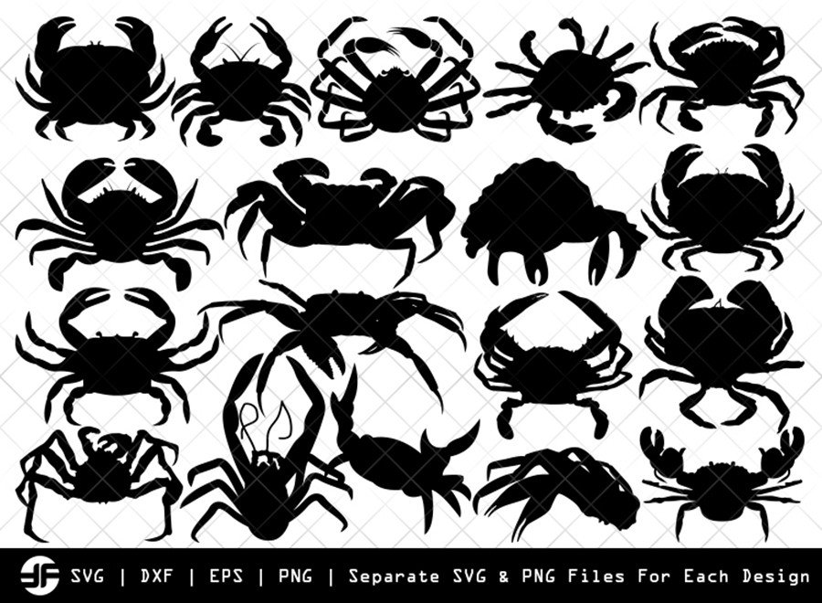Crab SVG | Insect SVG | Silhouette Bundle | SVG Cut File