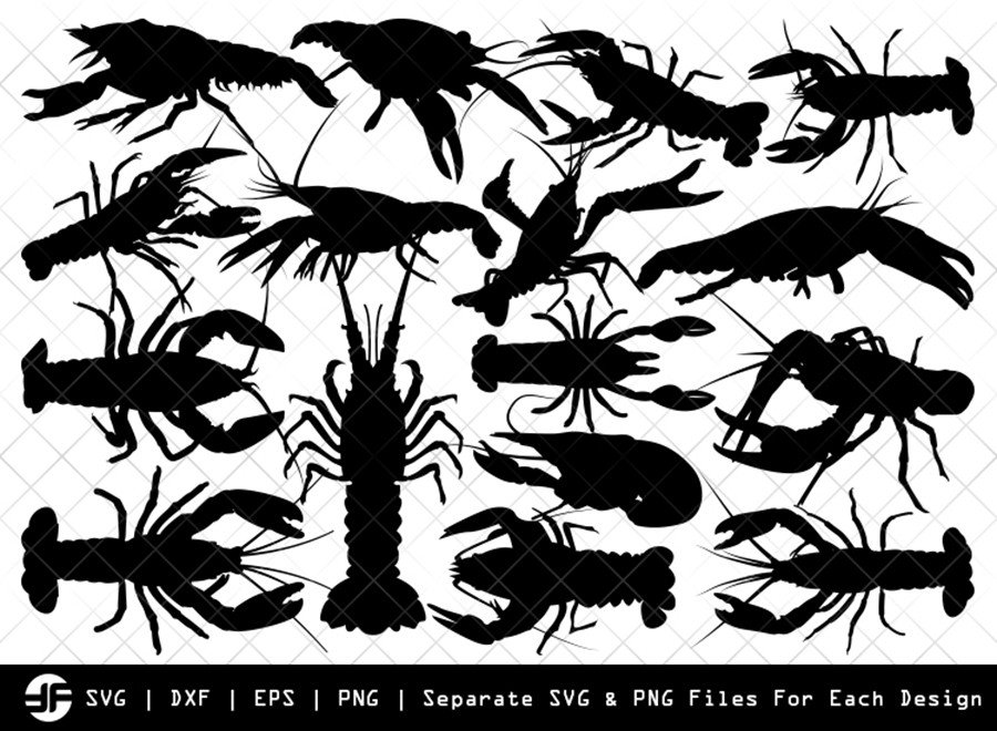 Crayfish SVG | Crayfish Insect | Silhouette Bundle | Cut File