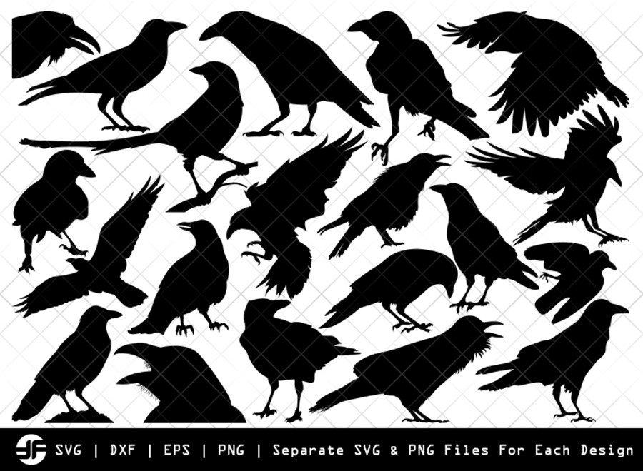 Crow SVG | Crow Bird Silhouette | Bird Bundle | SVG Cut File