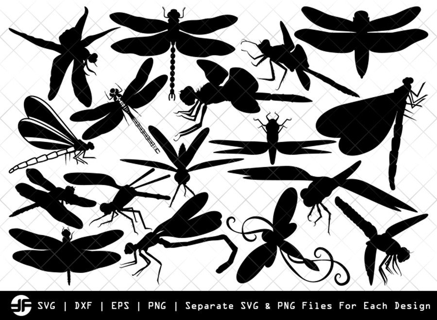 Dragonfly SVG | Insect SVG | Silhouette Bundle | SVG Cut File