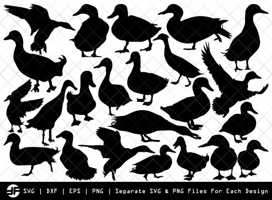 Duck SVG | Animal SVG | Silhouette Bundle | SVG Cut File