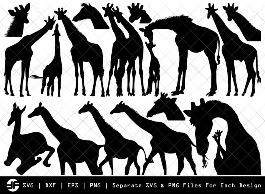 Giraffe SVG | Animal SVG | Silhouette Bundle | SVG Cut File