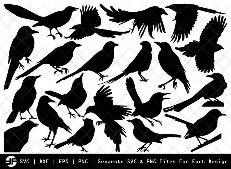 Magpie SVG | Bird Silhouette Bundle | SVG Cut File