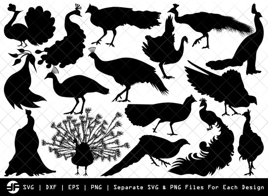 Peacock SVG | Animal SVG | Silhouette Bundle | SVG Cut File