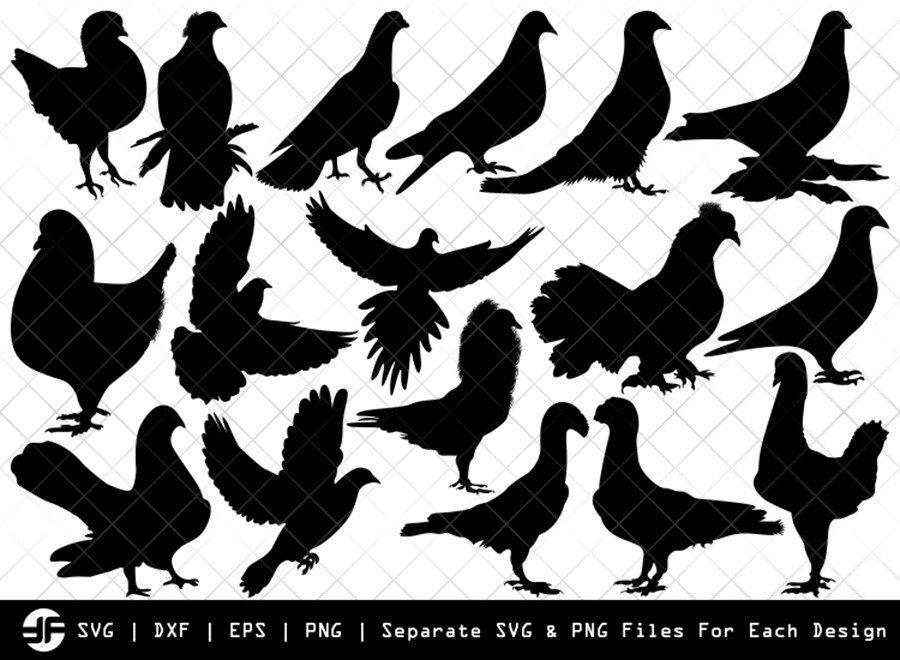 Pigeon SVG | Pigeon Bird Silhouette Bundle | SVG Cut File
