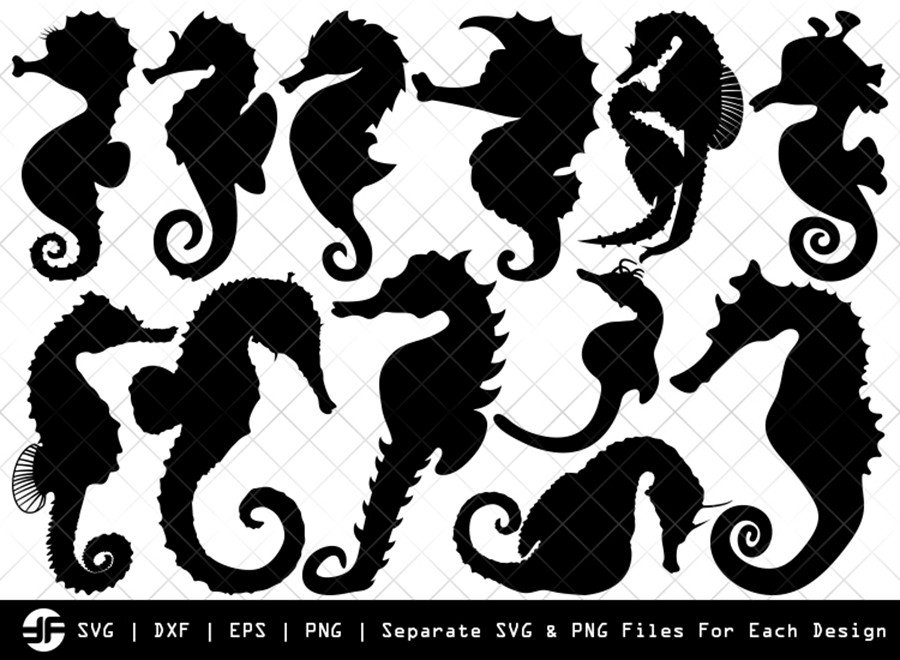 Seahorse SVG | Animal SVG | Silhouette Bundle | Cut File