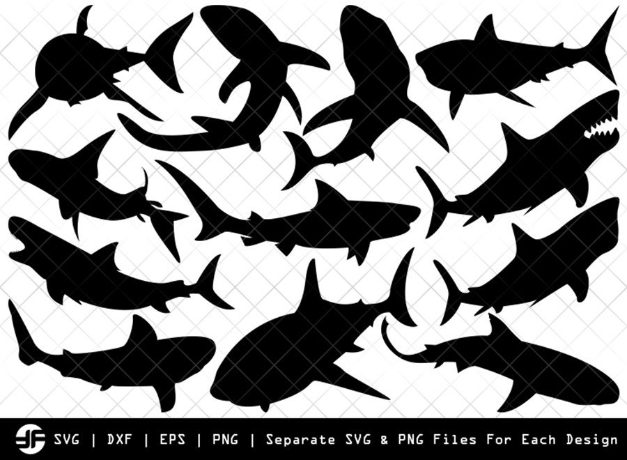 Shark SVG | Sea Fish SVG | Silhouette Bundle | SVG Cut File