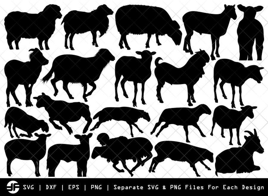 Sheep SVG | Animal SVG | Silhouette Bundle | SVG Cut File